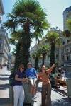 Škola němčiny Actilingua Summer School Vídeň, studenti školy na výletě po Vídni