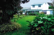 Škola španělštiny Dialogo Academia Tica de Espanol Kostarika, budova školy