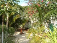 Patio IH Playa del Carmen
